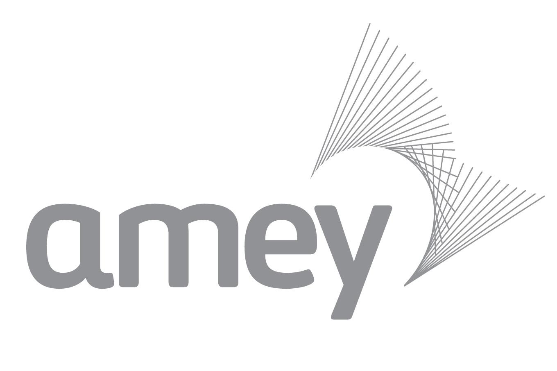 Amey-Briggs joint venture
